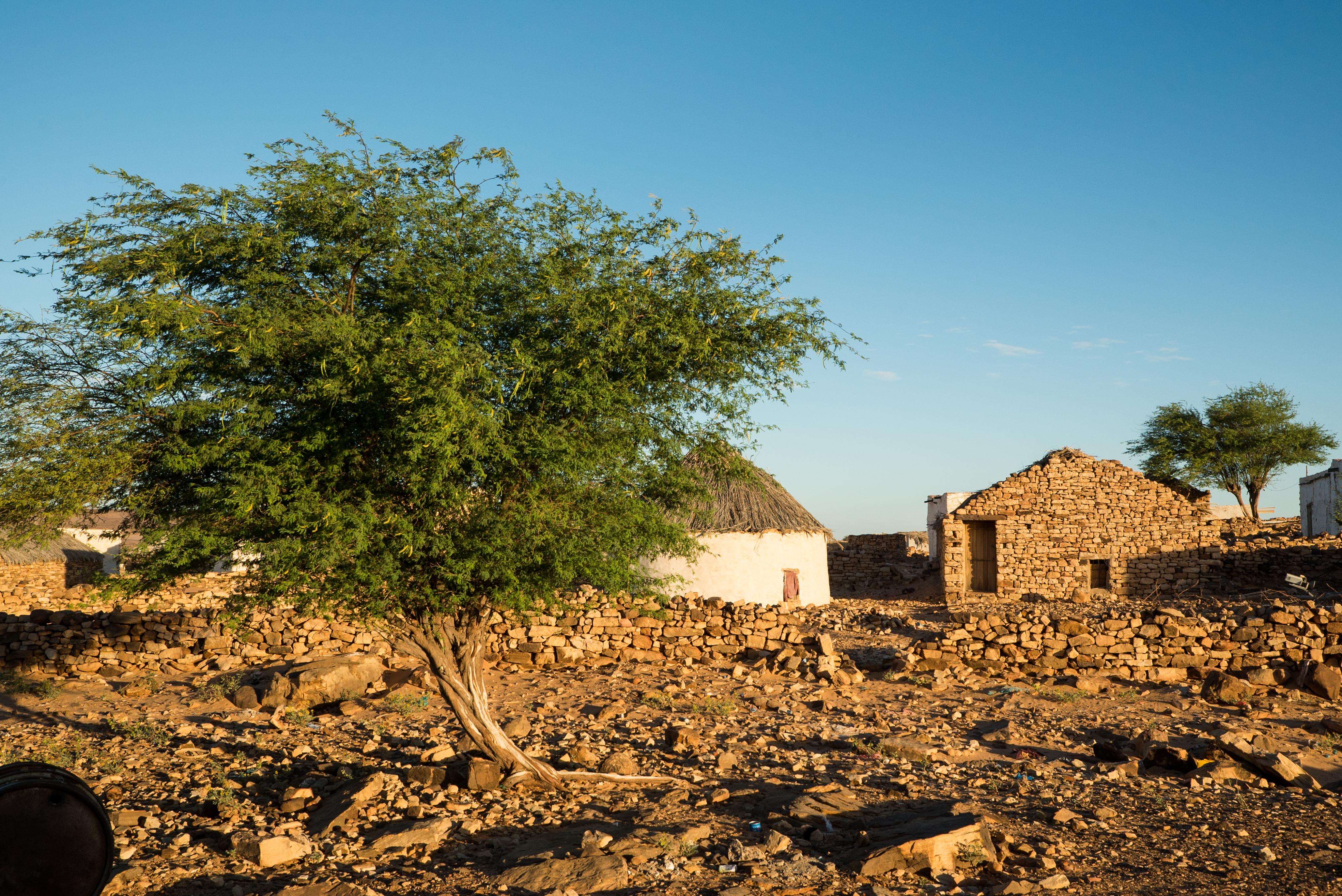 Maaden - Mauritanie